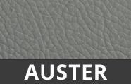 Auster-Grau